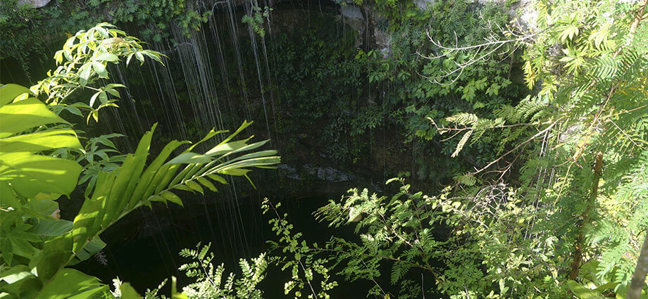 lush-cenotes-mexico